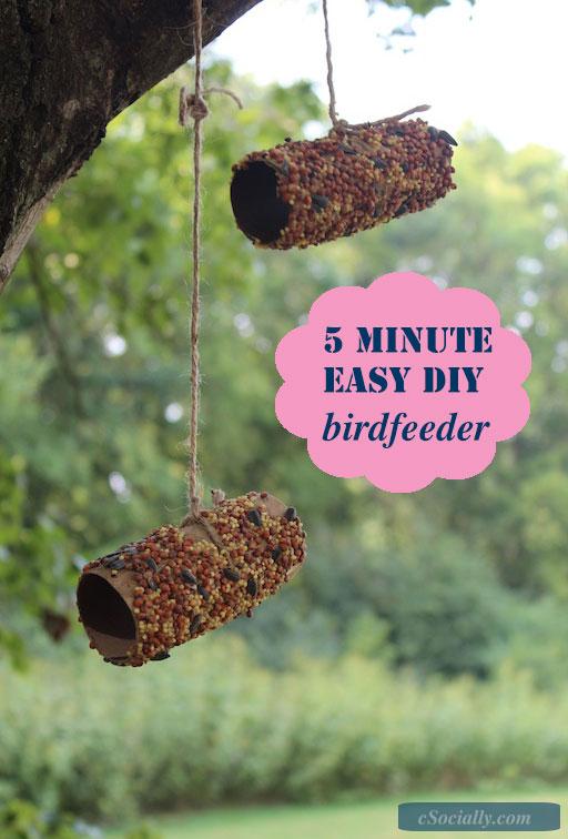 5 Minute DIY BIrd Feeder