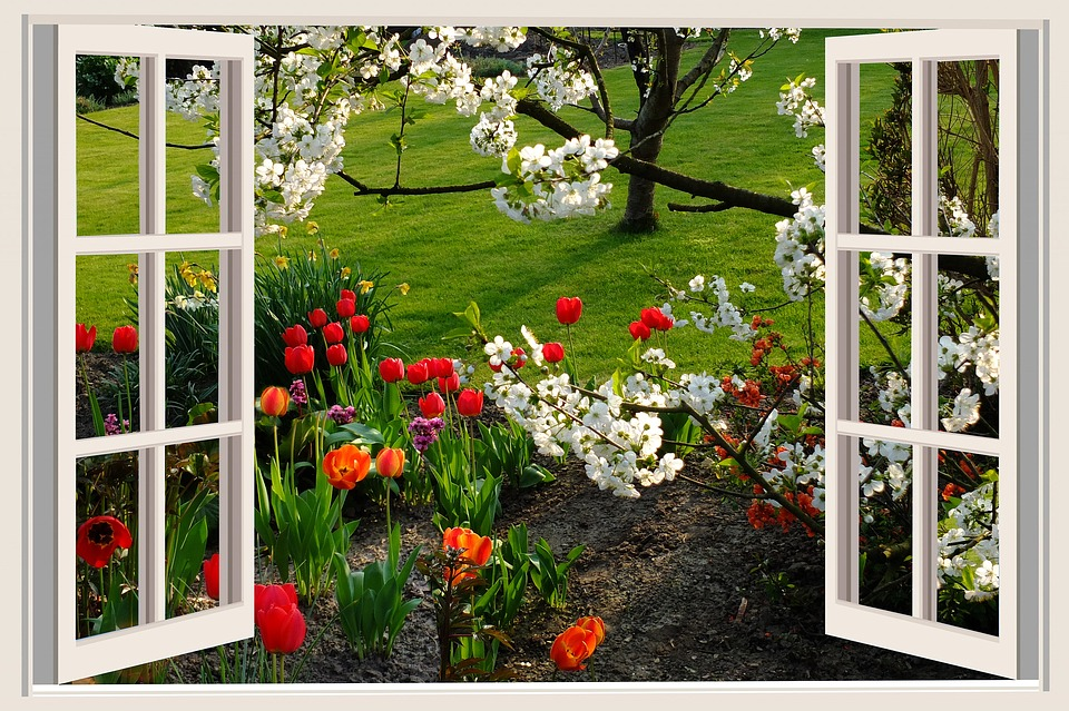 Opening up window to flowers